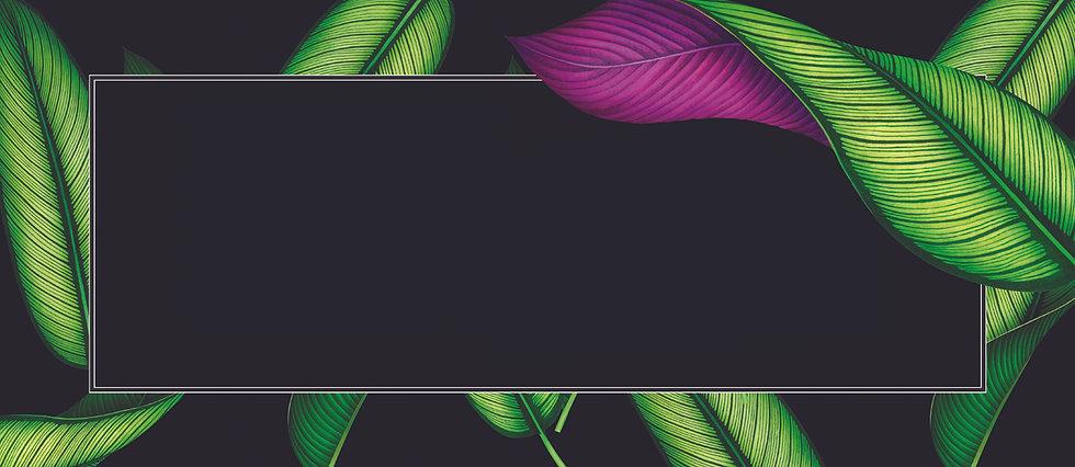 Header_Blank_Frame.jpg