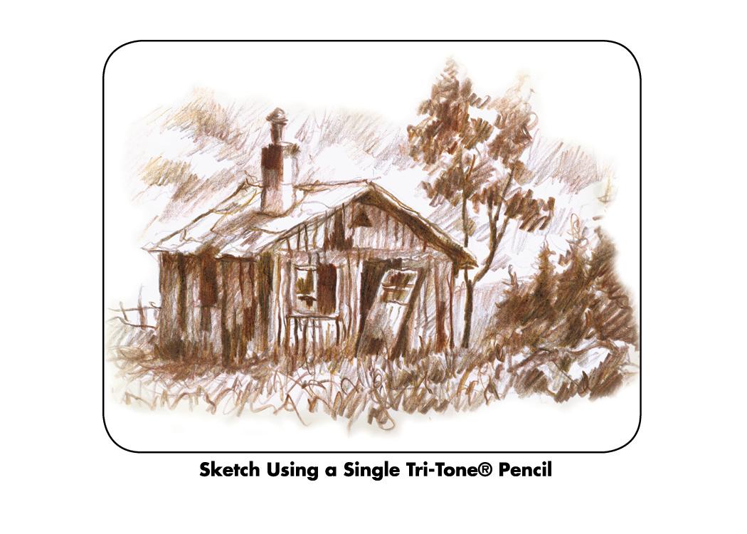 Single Tri-tone Pencil Sketch