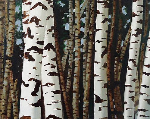 Birch Trees Acrylic Painting