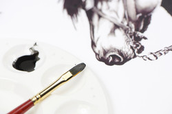 Special Drawing Ink
