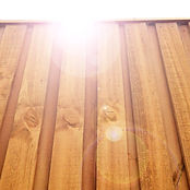 sunflair over the wooden fence.jpg