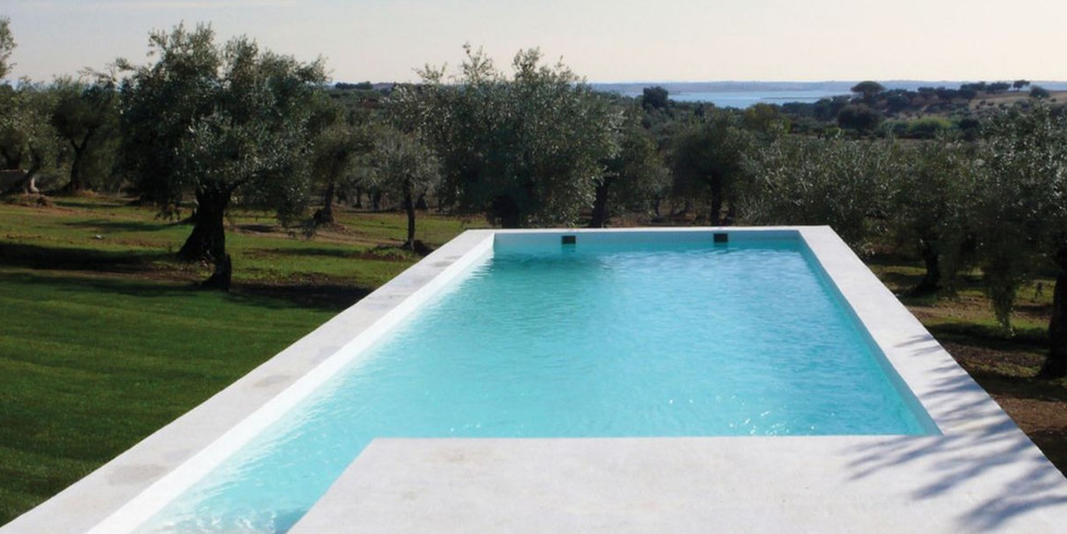 Swimming pool surrounded by olivetrees in Portugal