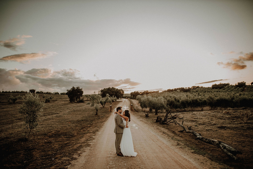 Bride and groom in the middle of an olive groove in the Alentejo, Portugal.