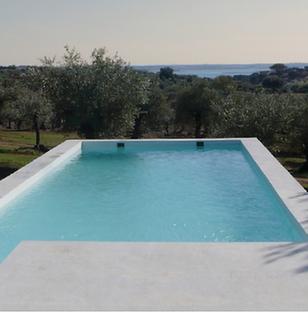 Zwembad met uitzicht over de Portugese olijfgaard in de Alentejo