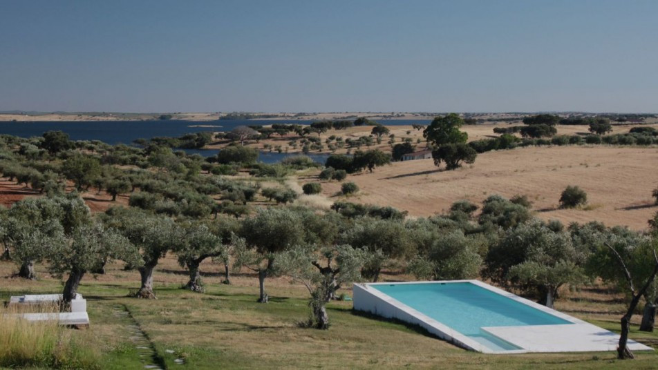 Landscape view with swimming pool, olivetrees and the lake in the Alentejo