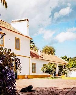 Landelijk gelegen appartementen met zwembad in de Alentejo, Portugal
