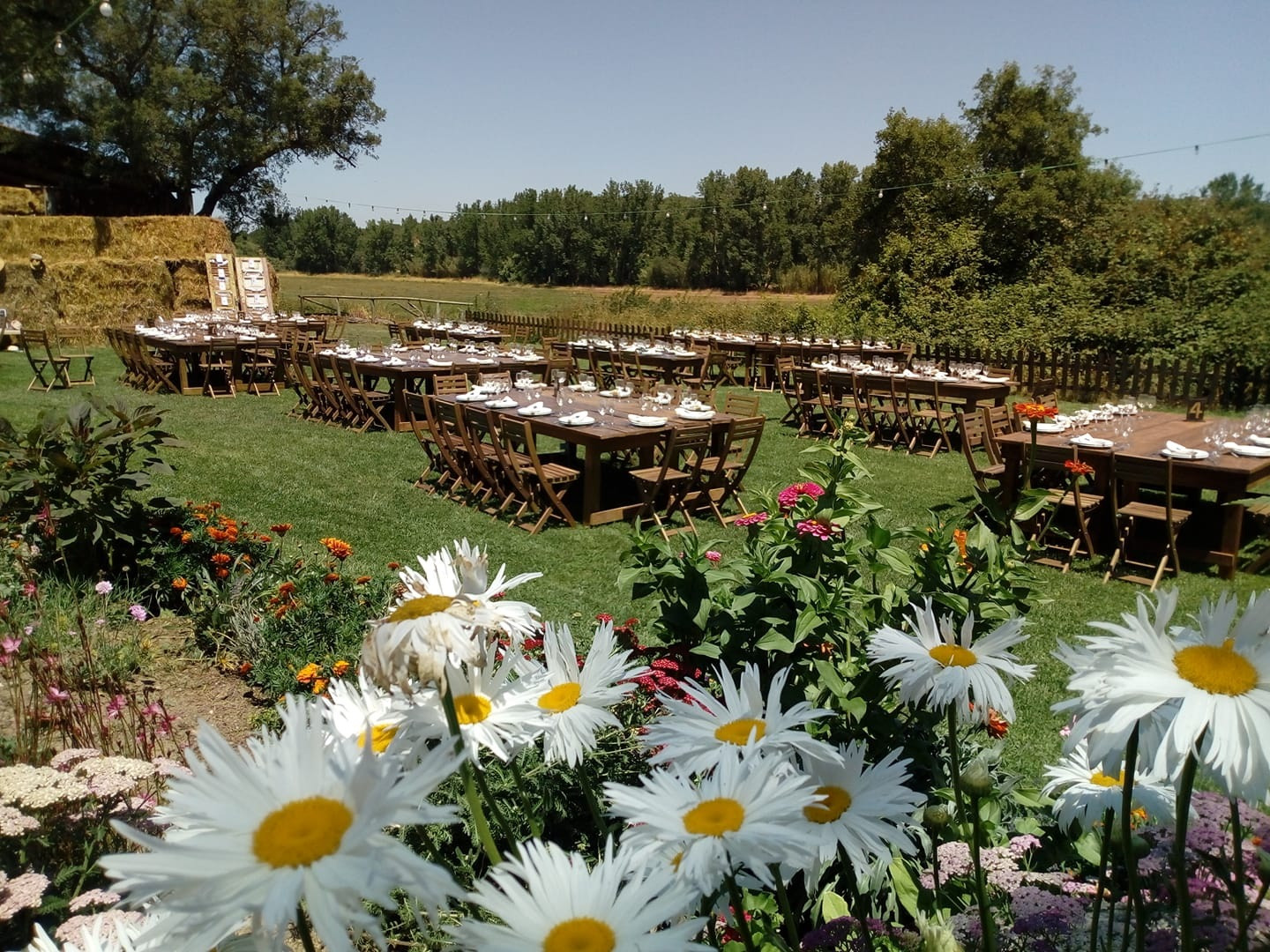 outdoor dinner setting in barn rustic style