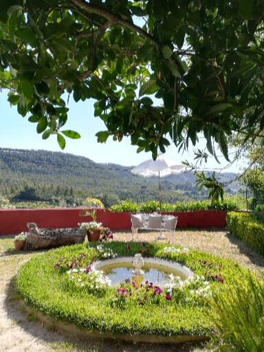 Detail of manicured garden of vineyard venue