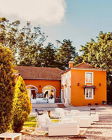 Cocktail setting at vineyard venue in Portugal