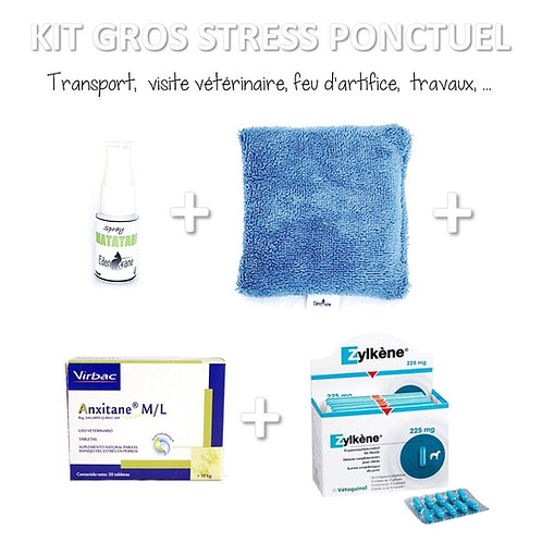KIT Gros Stress Ponctuel (passager)