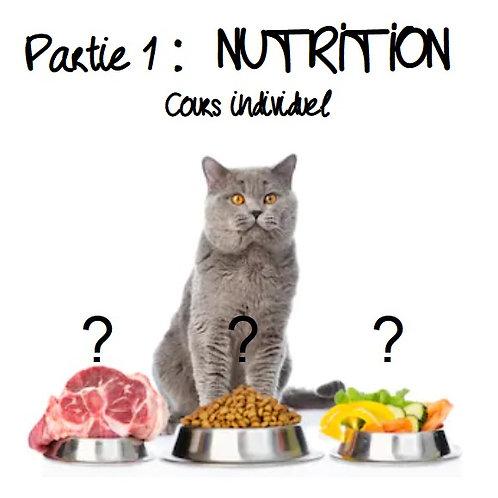 Stage NUTRITION individuel