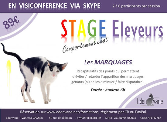 STAGE comp MARQUAGES.jpg