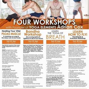 Yoga Factory Sydney workshop with Adrian Cox