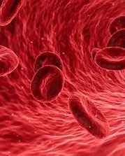 blood oxygen.webp