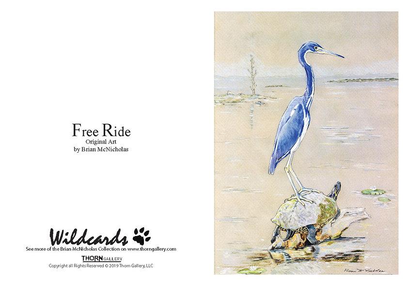 Free Ride by Brian McNicholas