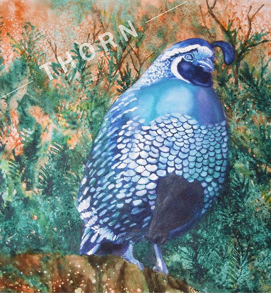 Bird by Karen Thornberg