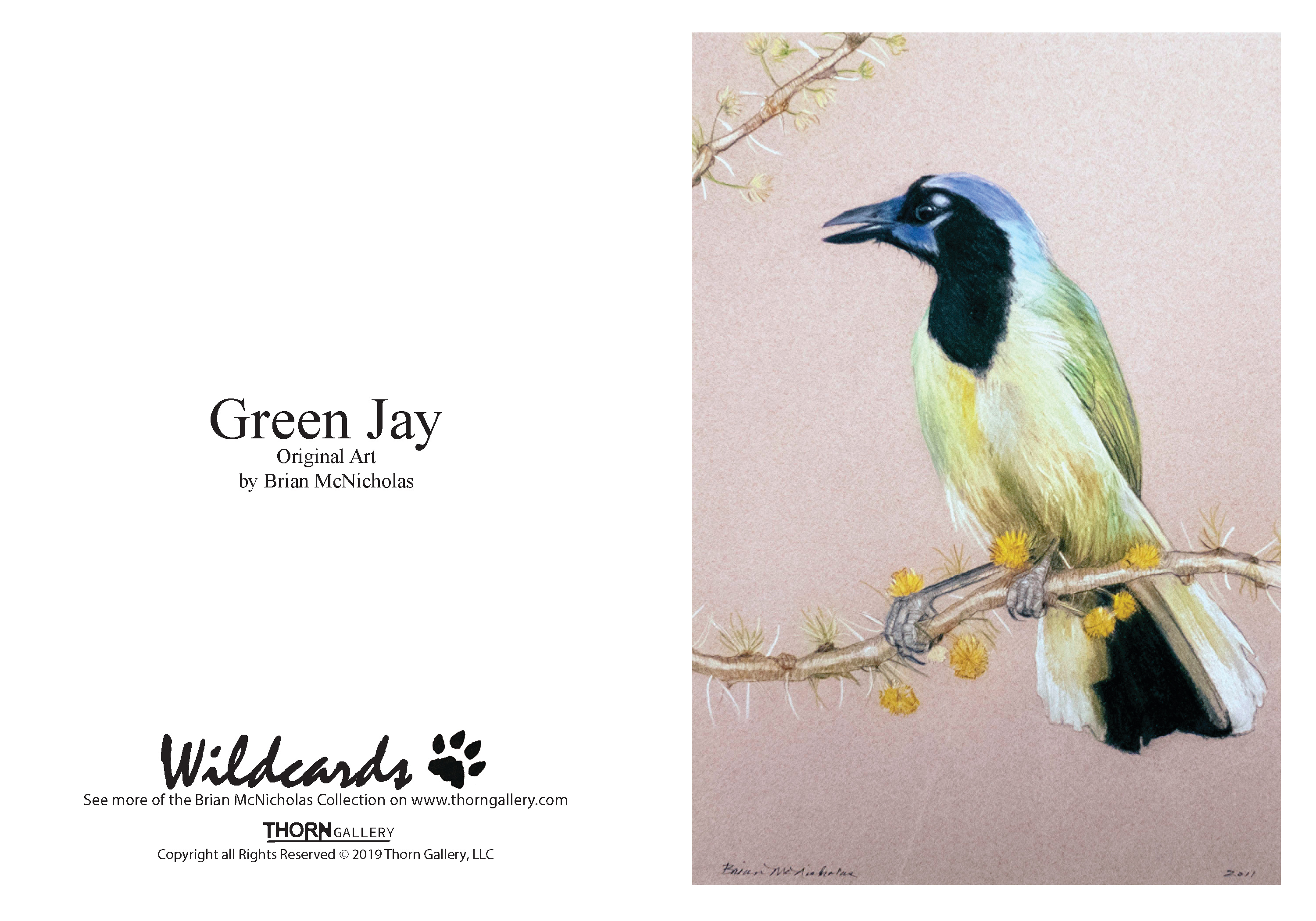 Green Jay Greeting Card