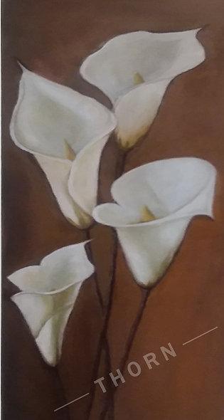 Calla Lily by Inna Makarichev