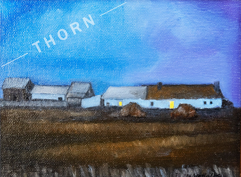 Irish Farmhouse by Brian McNicholas