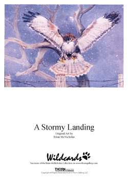 A Stormy Landing Greeting Card