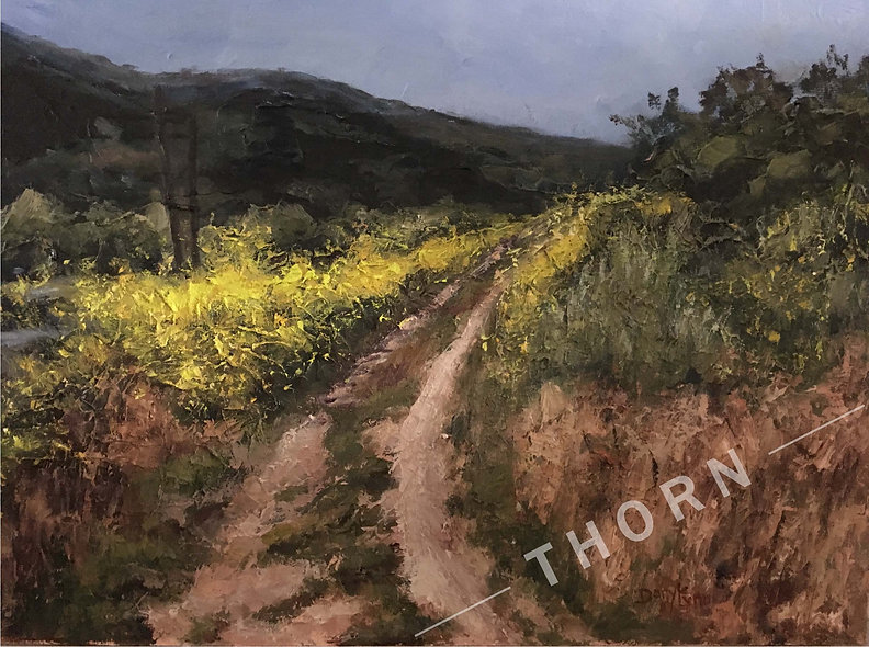 Spring In Laguna Canyon by Daryle Lynn Cornelison