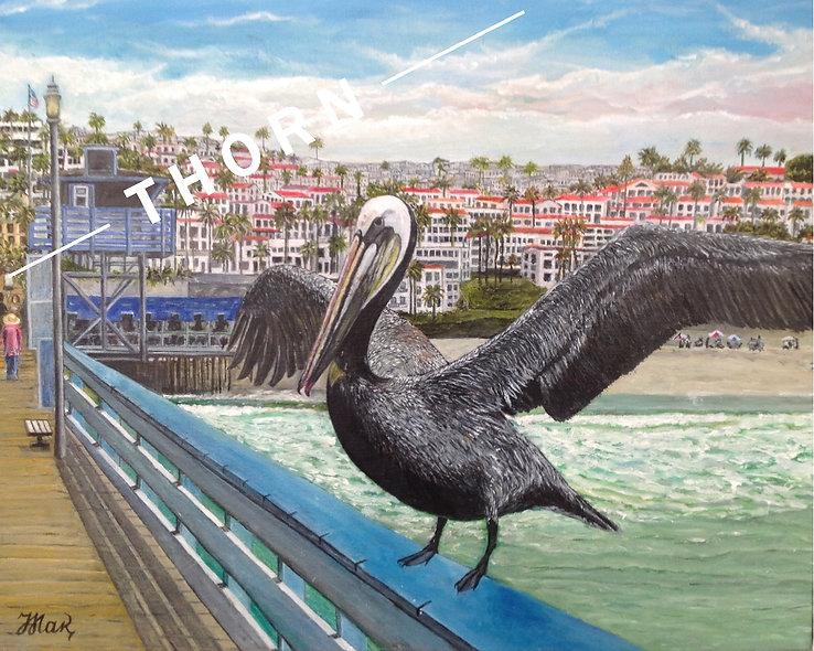 Pelican by Inna Makarichev