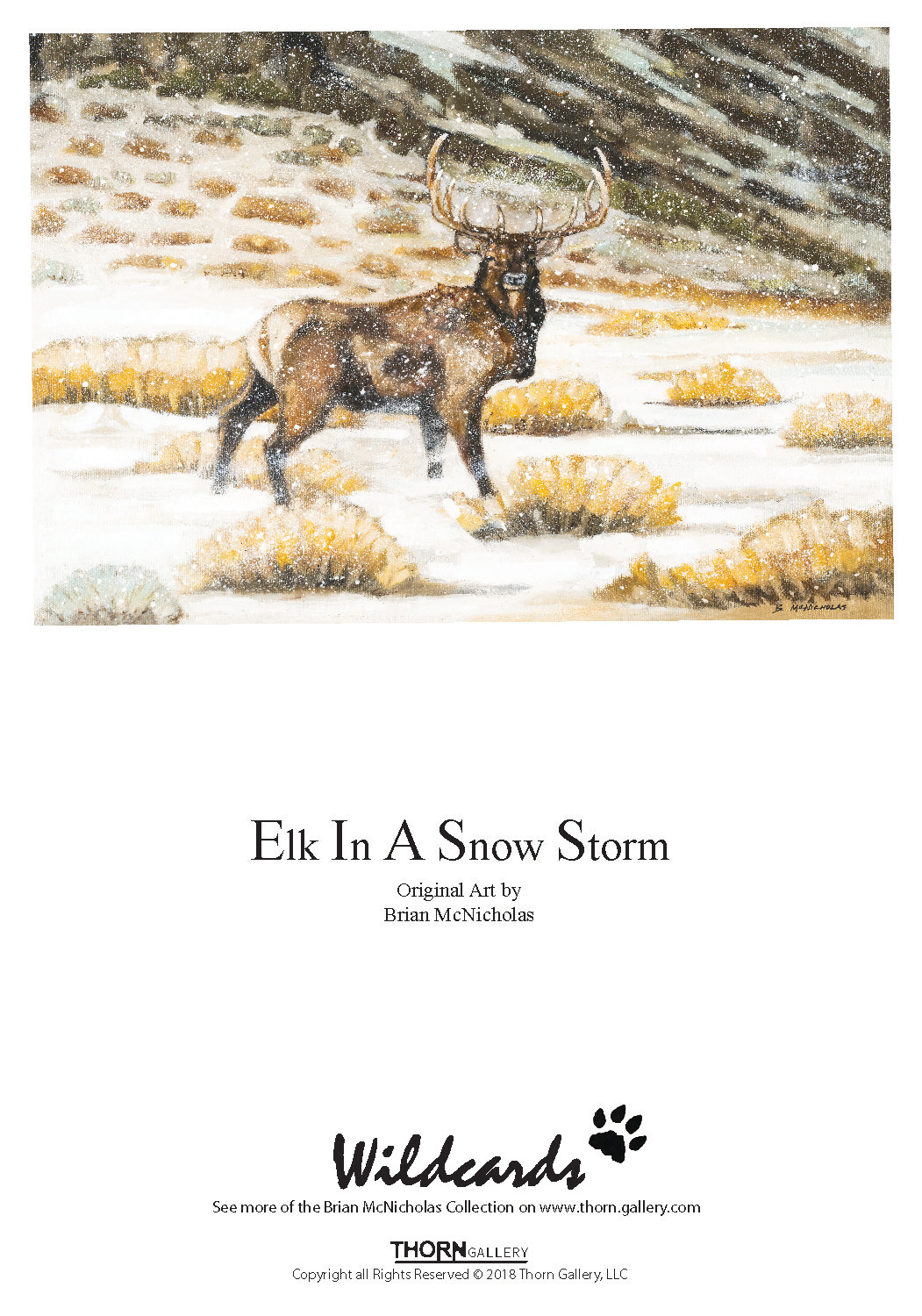 Elk In A Snow Storm Greeting Card