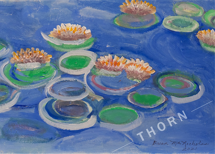 Water Lilies by Brian McNicholas