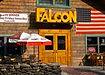 falcon_rev.jpg