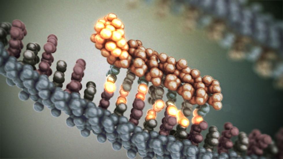 3D DNA Marker