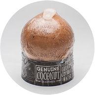 wix coconut.jpg