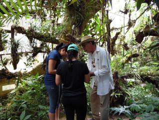 Orquídeas Moxviquil | Escápate de la rutina