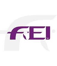FEI-03.png