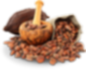 cacao (3).png