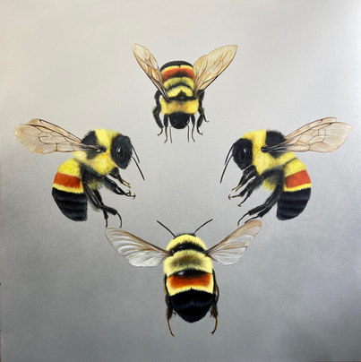 'High_Society', by Louise McNaught