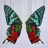 'Hidden Rainbows', 60x60cm £250, 31x31cm