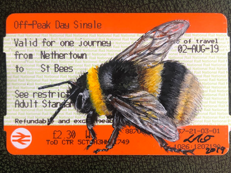 August sees the launch of the 'A-Z Bees & Beetles Ticket Series'
