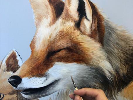 Getting foxy 🦊