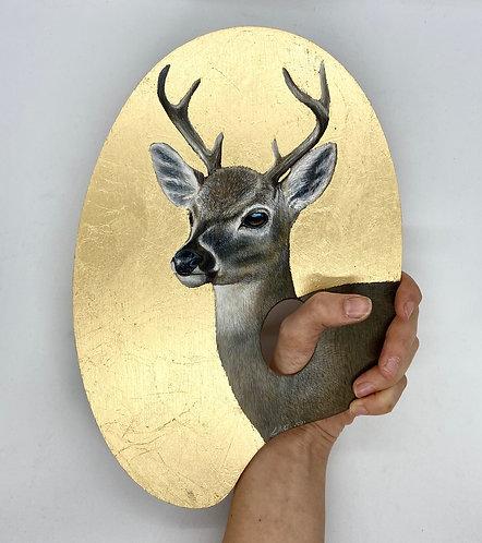 Nature is the True Artist Series (Key Deer)
