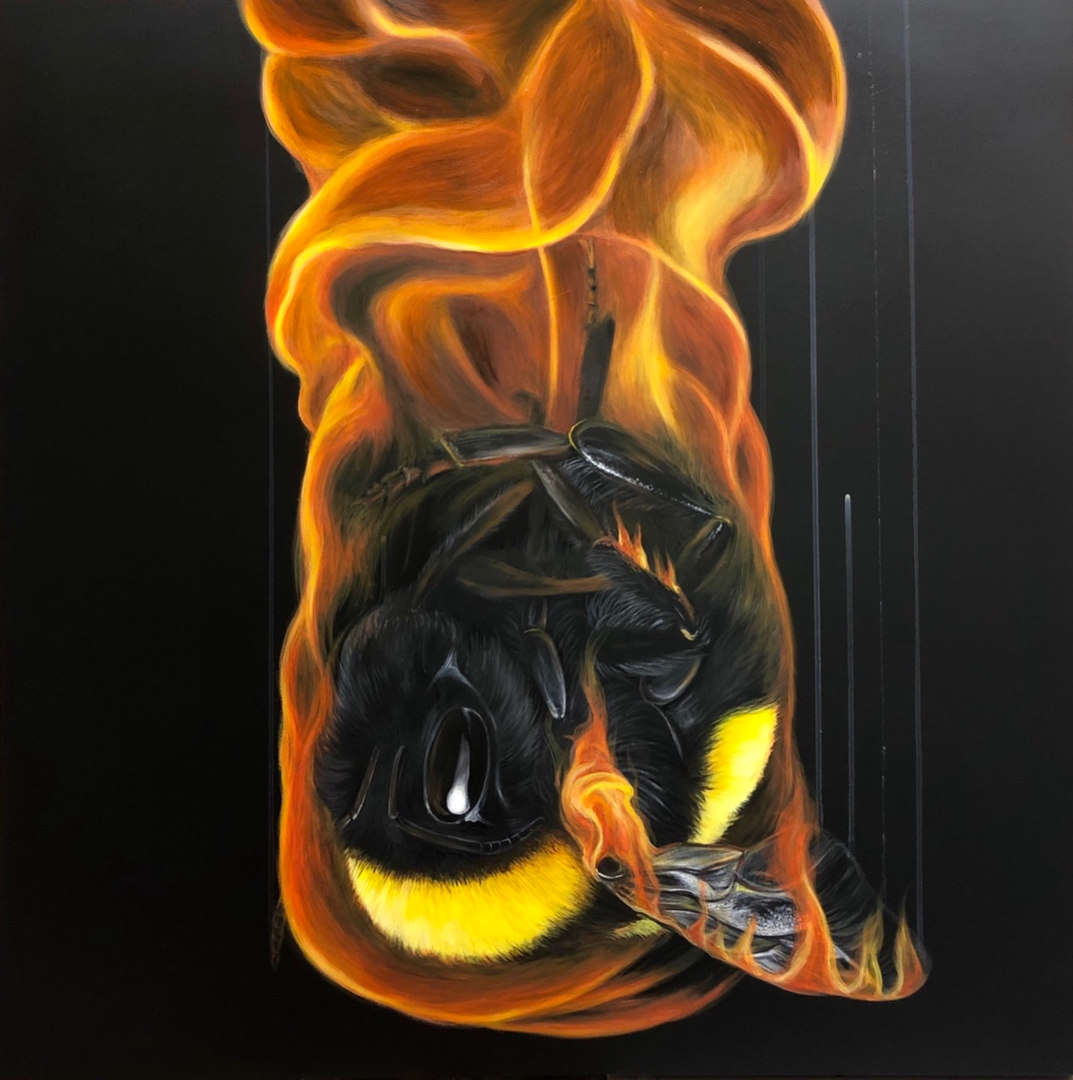 Burnt Out, 80x80cm, Louise Mcnaught jpg.