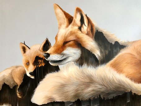 The foxes are finished!