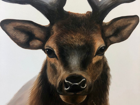 Adding Detail to my Stag Piece