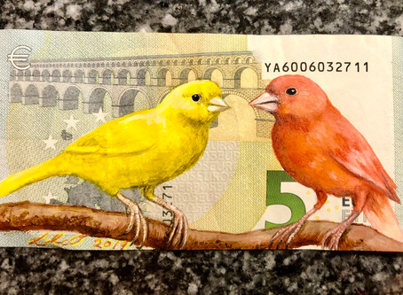 C is for Canaries on Euros 💶