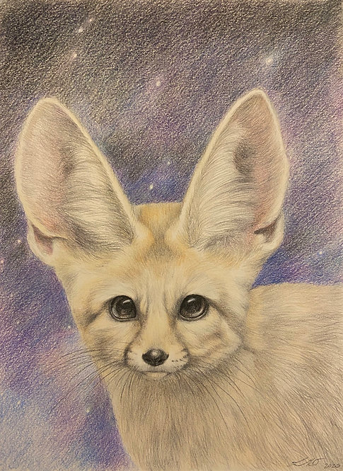 Fennec Fox (The Cute Collection)