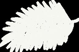 RP Logo_leaf only-light green.png