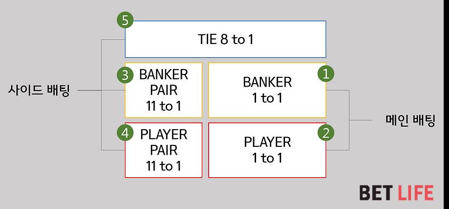 바카라 게임규칙_배팅과배당률.png