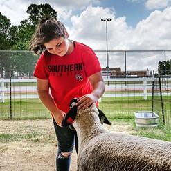 Our animal science intern, Sydney Newsom