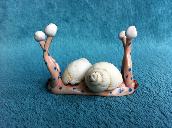 Snail Twins with Authentic Shells