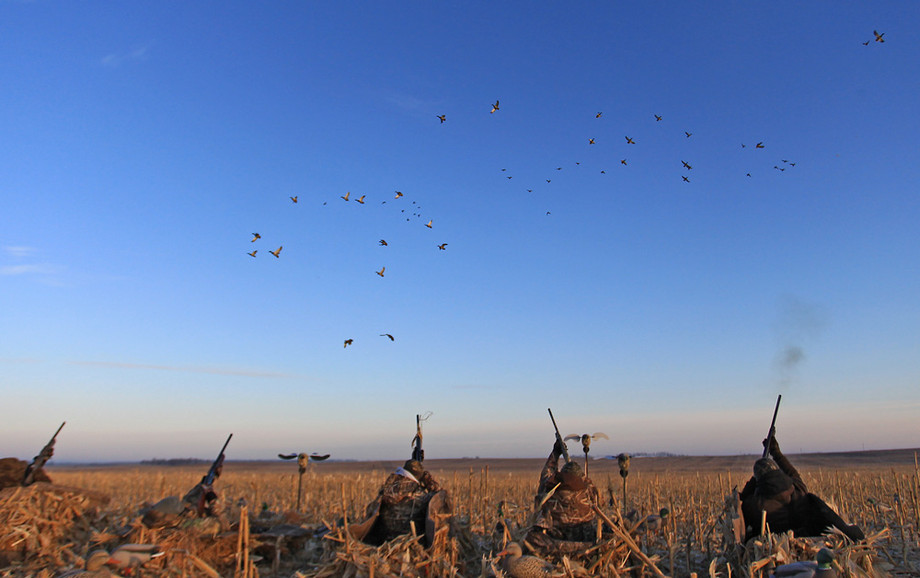Waterfowl Hunt