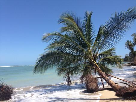 Die Insel der Selbstfürsorge